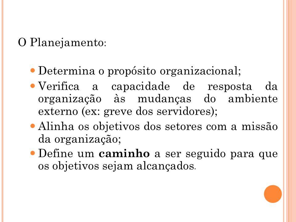 Determina o propósito organizacional;