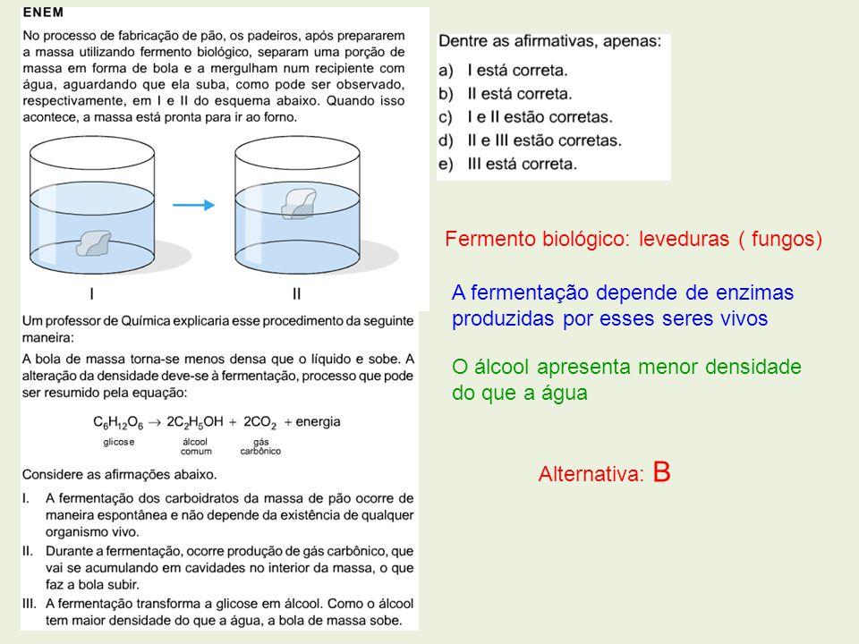 Fermento biológico: leveduras ( fungos)