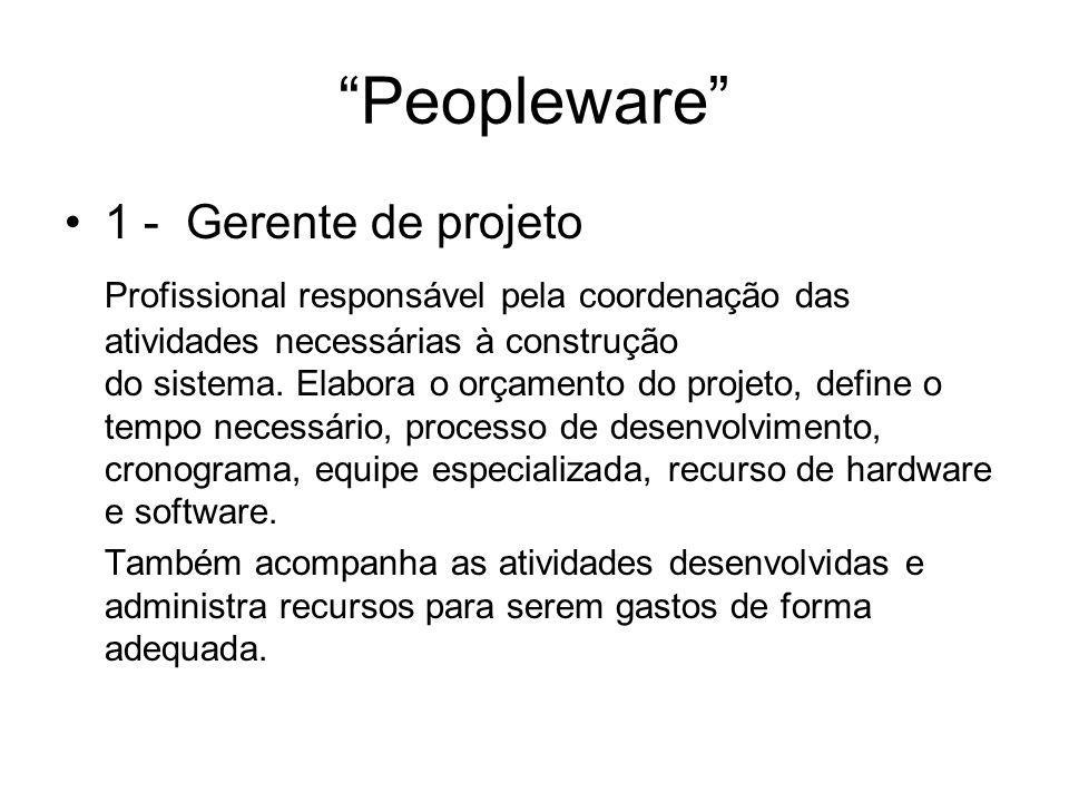 Peopleware 1 - Gerente de projeto