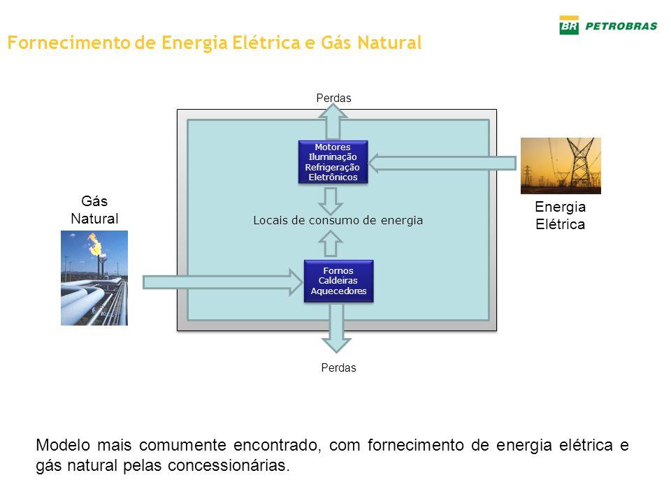 Fornecimento de Energia Elétrica e Gás Natural