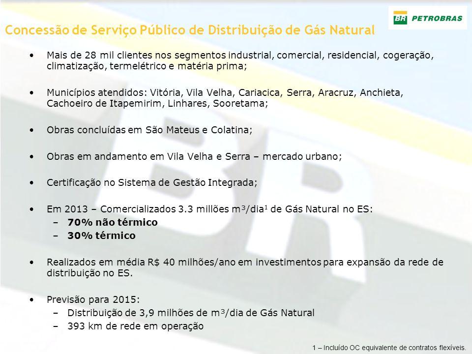 Concessão de Serviço Público de Distribuição de Gás Natural