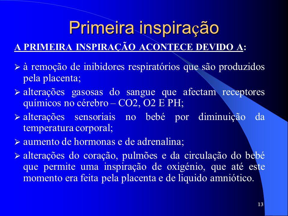Primeira inspiração A PRIMEIRA INSPIRAÇÃO ACONTECE DEVIDO A: à remoção de inibidores respiratórios que são produzidos pela placenta;