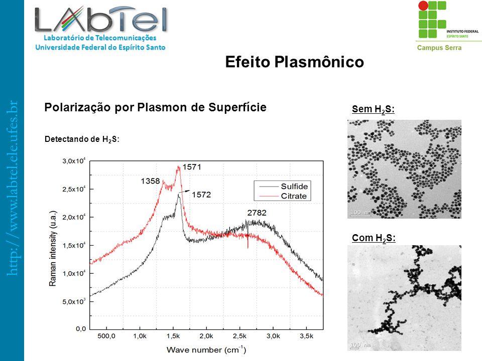 Polarização por Plasmon de Superfície