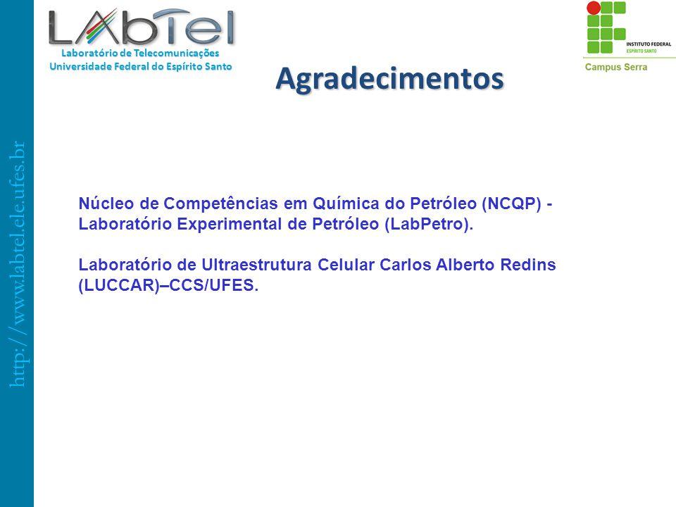 Agradecimentos Núcleo de Competências em Química do Petróleo (NCQP) - Laboratório Experimental de Petróleo (LabPetro).