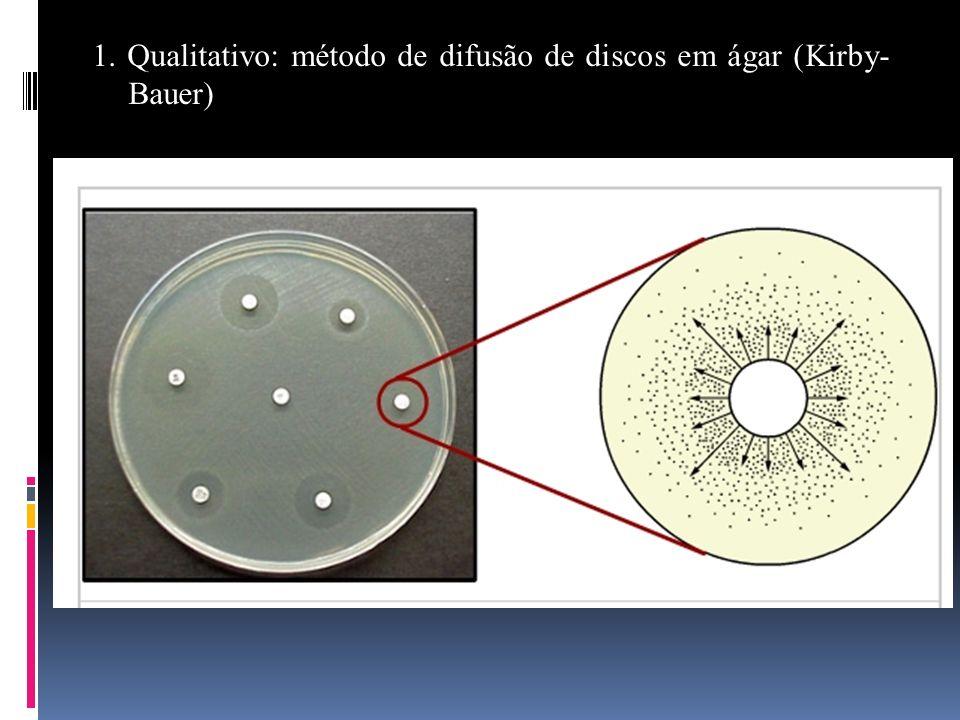 1. Qualitativo: método de difusão de discos em ágar (Kirby-Bauer)