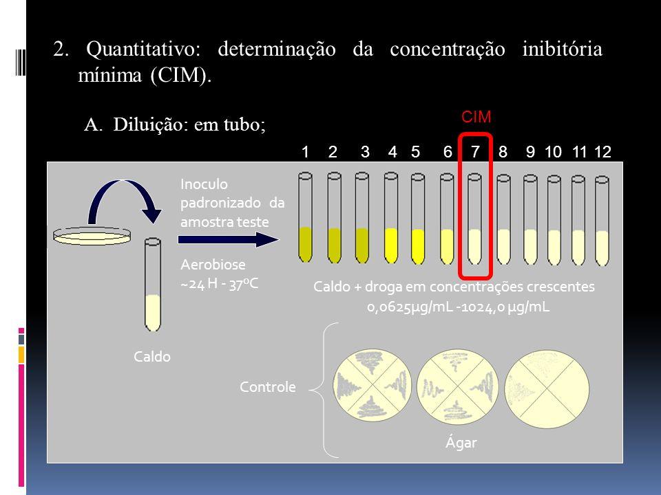 Caldo + droga em concentrações crescentes
