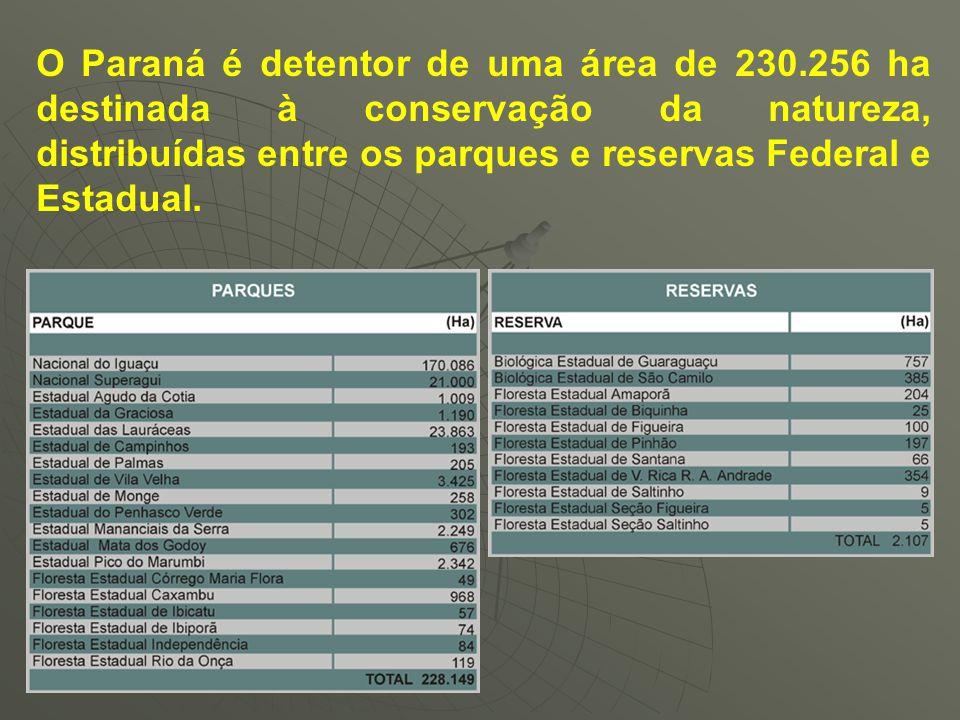 O Paraná é detentor de uma área de 230