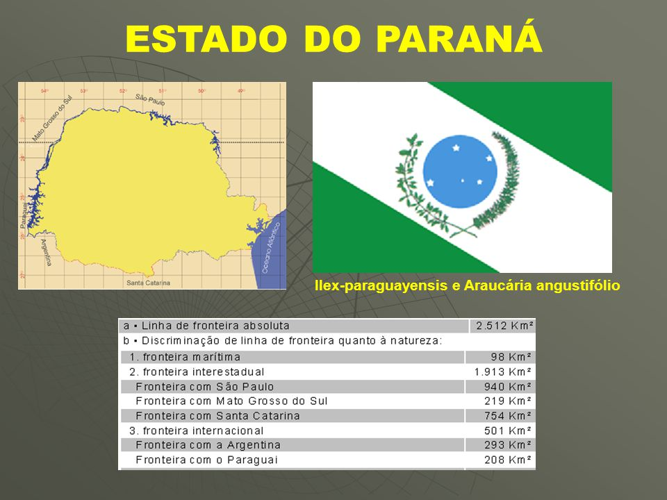 Ilex-paraguayensis e Araucária angustifólio