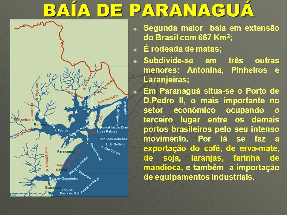 BAÍA DE PARANAGUÁ Segunda maior baía em extensão do Brasil com 667 Km2; É rodeada de matas;