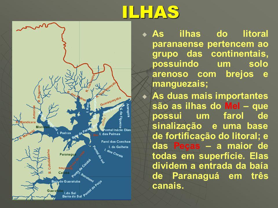 ILHAS As ilhas do litoral paranaense pertencem ao grupo das continentais, possuindo um solo arenoso com brejos e manguezais;