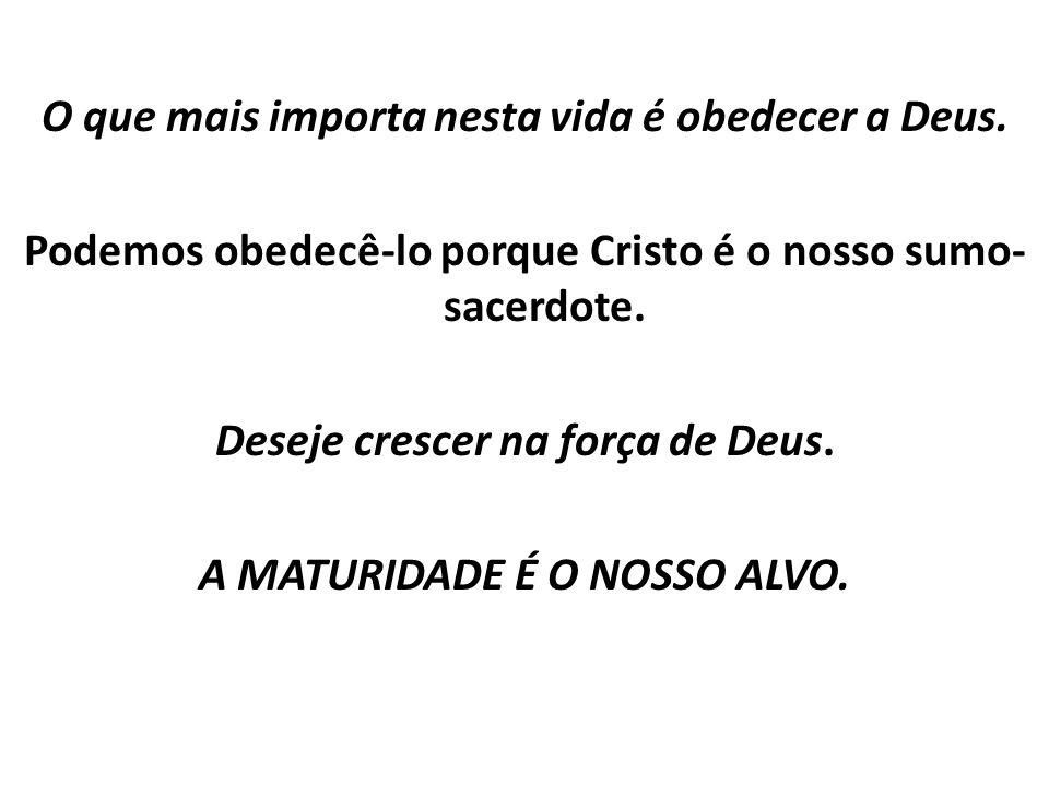 O que mais importa nesta vida é obedecer a Deus