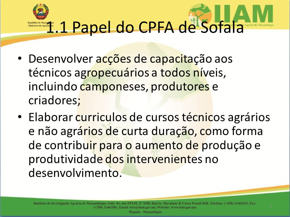 1.1 Papel do CPFA de Sofala