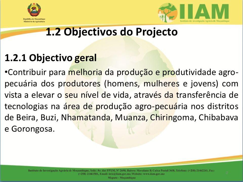 1.2 Objectivos do Projecto