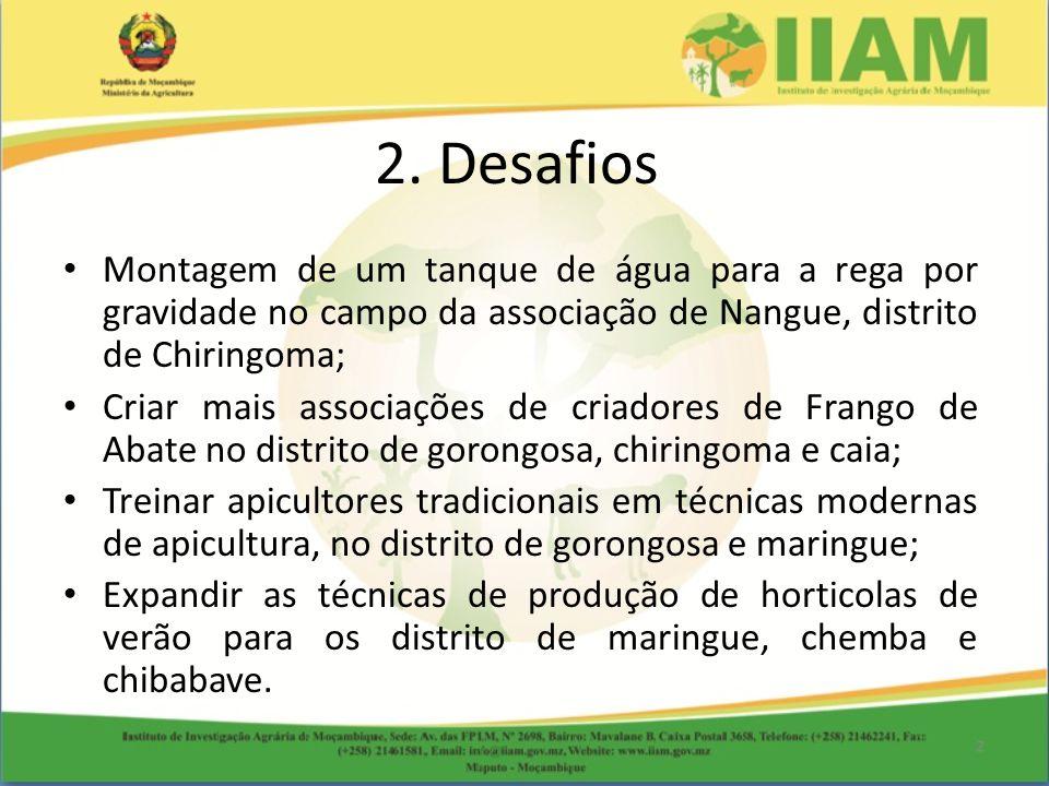 2. Desafios Montagem de um tanque de água para a rega por gravidade no campo da associação de Nangue, distrito de Chiringoma;