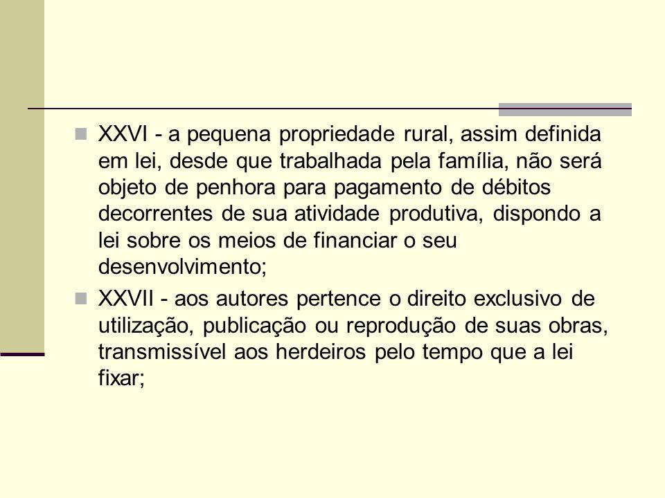 XXVI - a pequena propriedade rural, assim definida em lei, desde que trabalhada pela família, não será objeto de penhora para pagamento de débitos decorrentes de sua atividade produtiva, dispondo a lei sobre os meios de financiar o seu desenvolvimento;