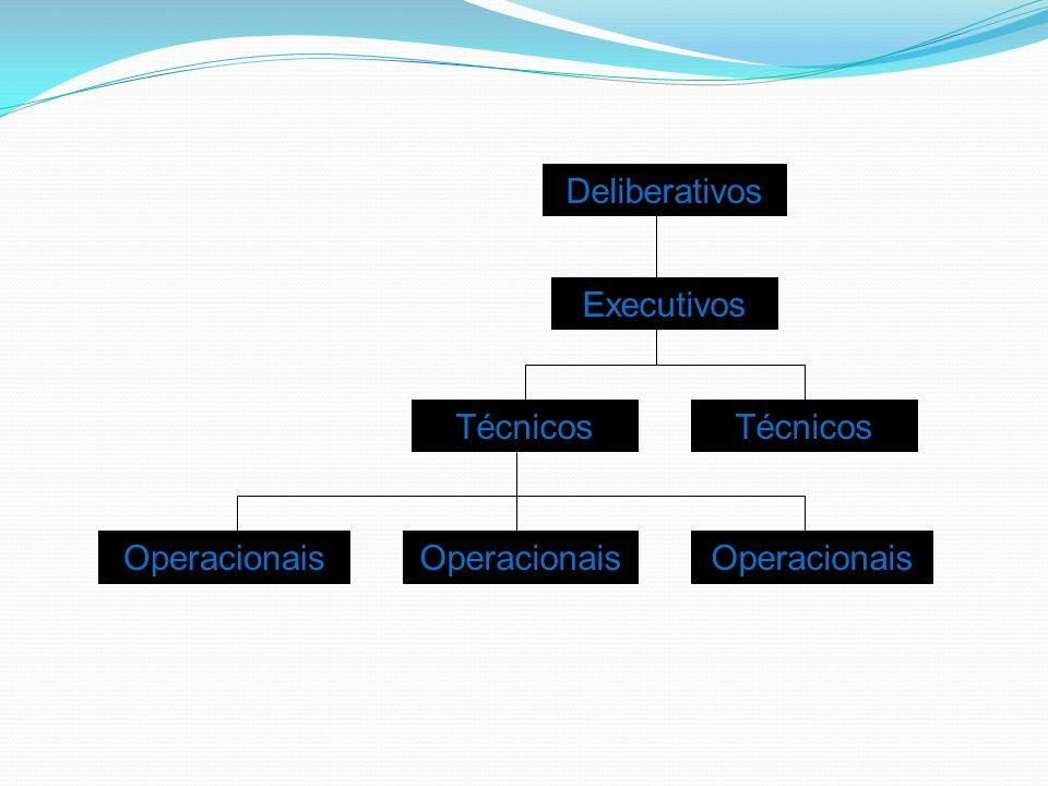 Deliberativos Executivos Técnicos Técnicos Operacionais Operacionais Operacionais