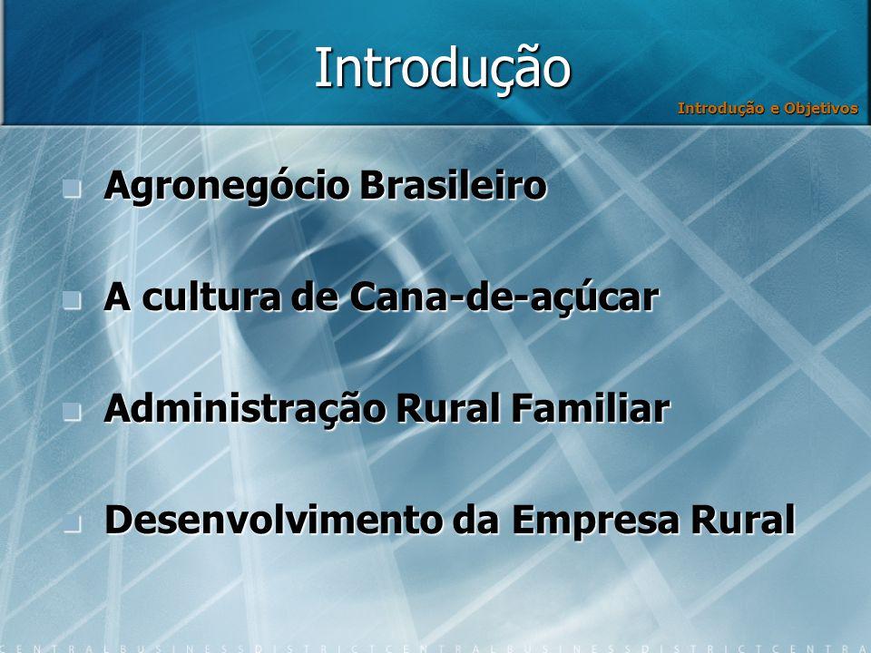 Introdução Agronegócio Brasileiro A cultura de Cana-de-açúcar