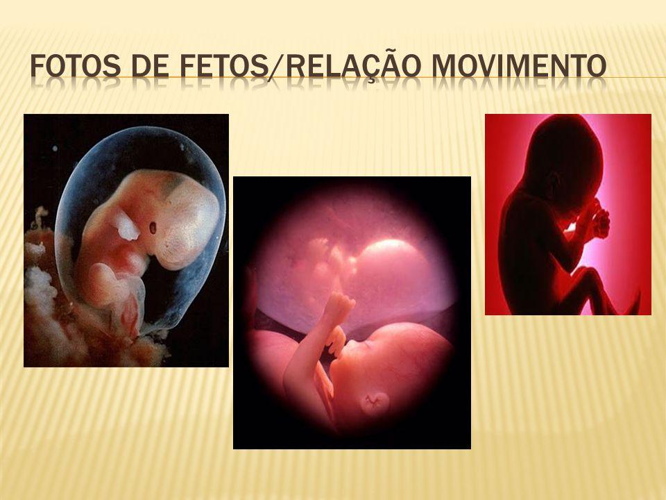 Fotos de fetos/relação movimento