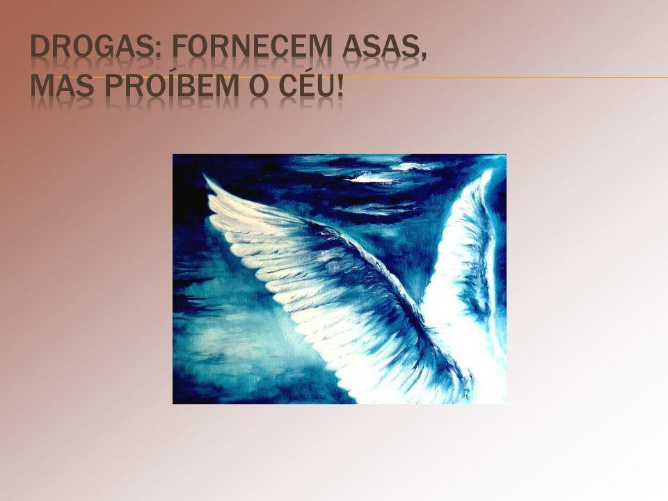 Drogas: fornecem asas, mas proíbem o céu!