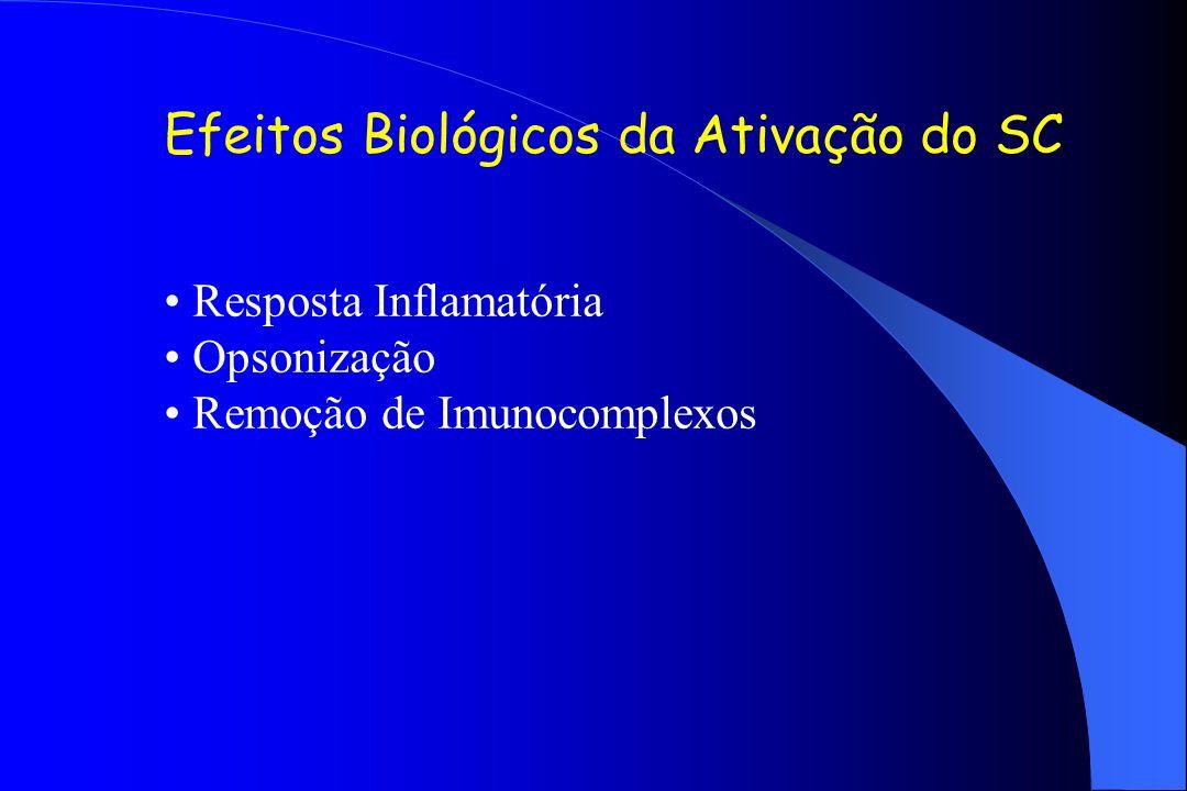 Efeitos Biológicos da Ativação do SC