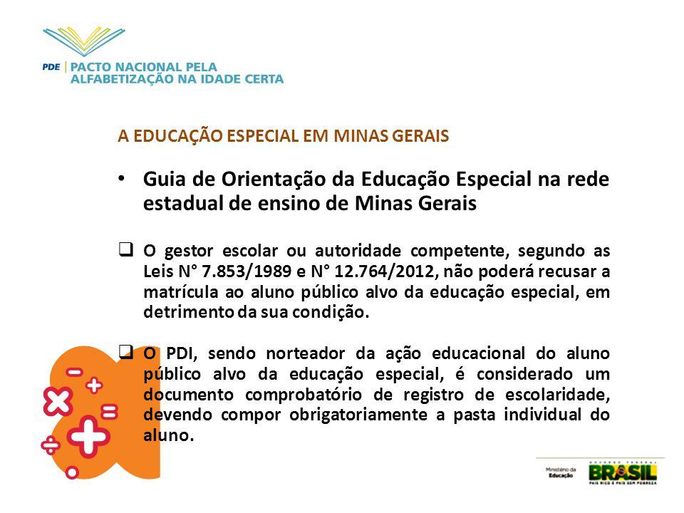 A EDUCAÇÃO ESPECIAL EM MINAS GERAIS