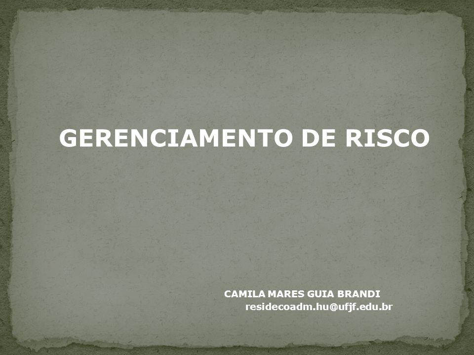 GERENCIAMENTO DE RISCO CAMILA MARES GUIA BRANDI