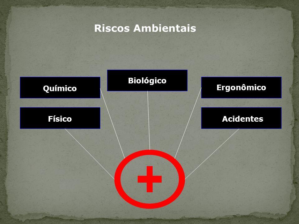 Riscos Ambientais Biológico Químico Ergonômico Físico Acidentes 27