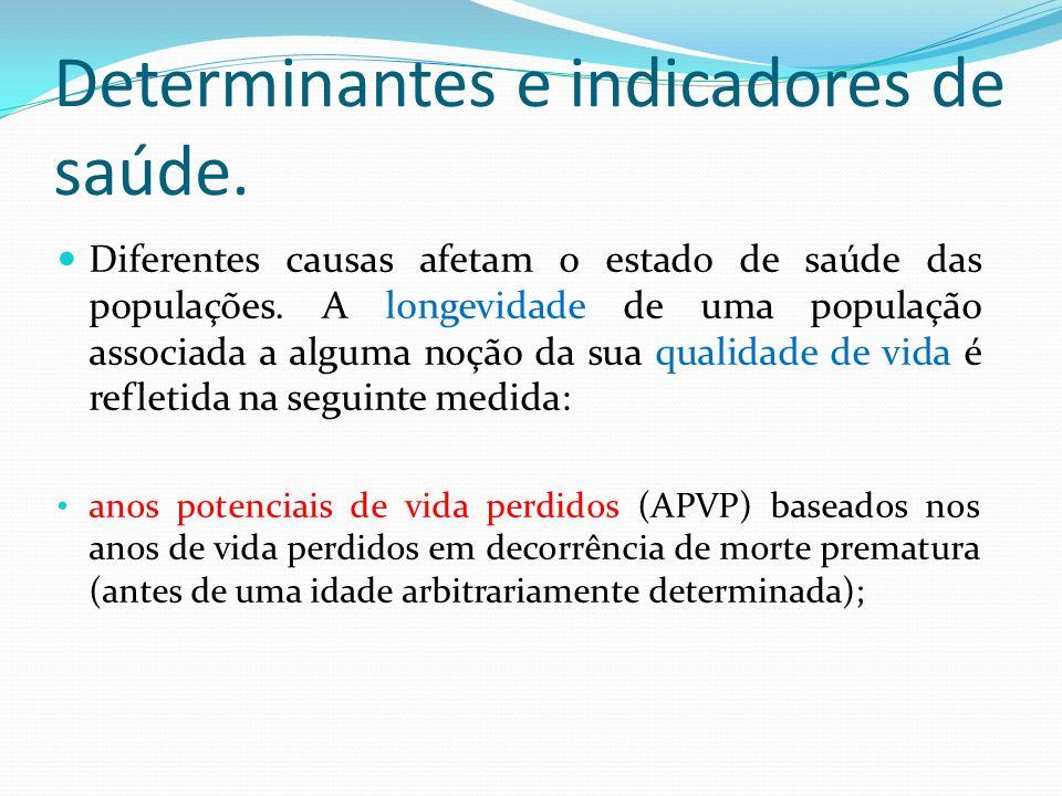 Determinantes e indicadores de saúde.