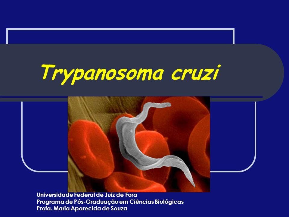 Trypanosoma cruzi Universidade Federal de Juiz de Fora