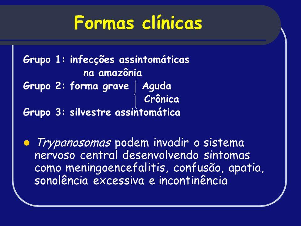 Formas clínicas Grupo 1: infecções assintomáticas. na amazônia. Grupo 2: forma grave Aguda. Crônica.