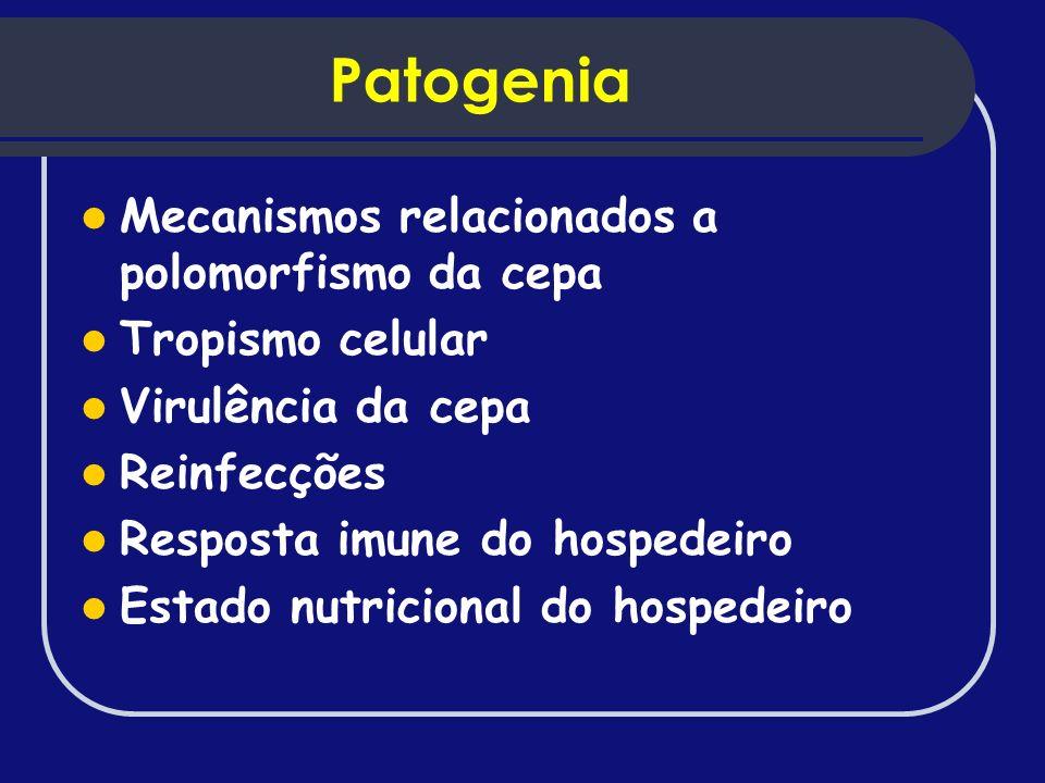 Patogenia Mecanismos relacionados a polomorfismo da cepa
