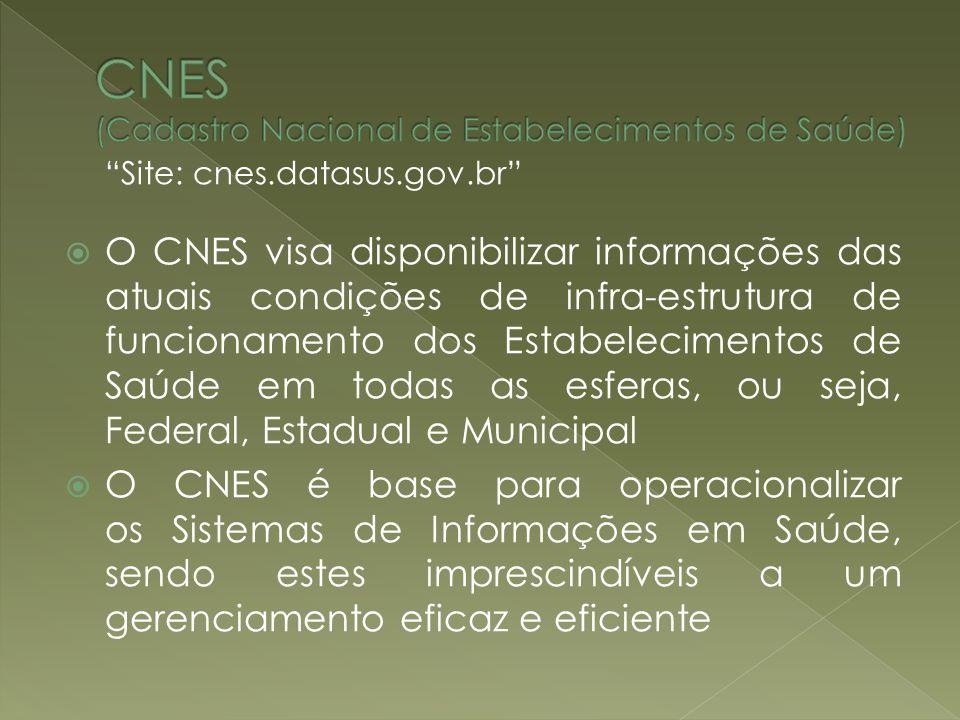 CNES (Cadastro Nacional de Estabelecimentos de Saúde)