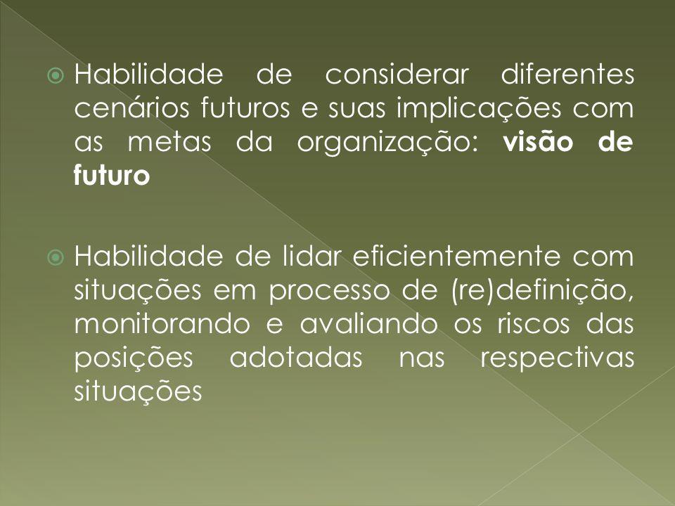 Habilidade de considerar diferentes cenários futuros e suas implicações com as metas da organização: visão de futuro