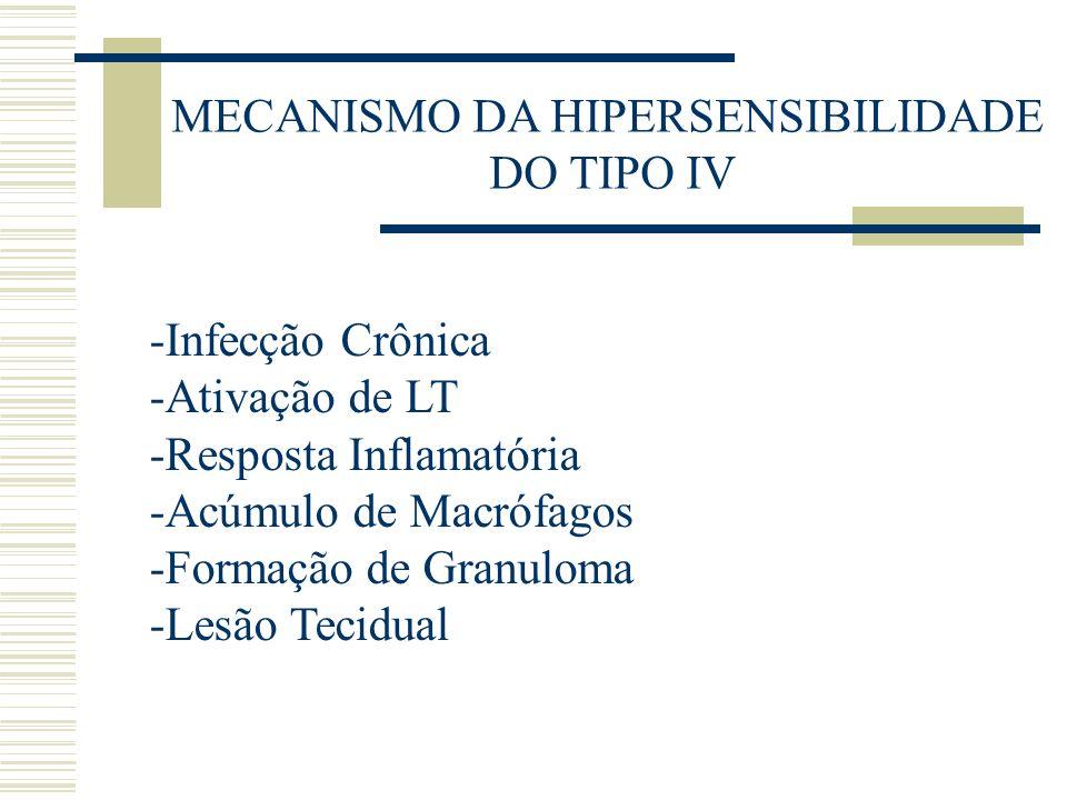 MECANISMO DA HIPERSENSIBILIDADE