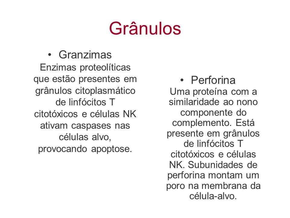 Grânulos