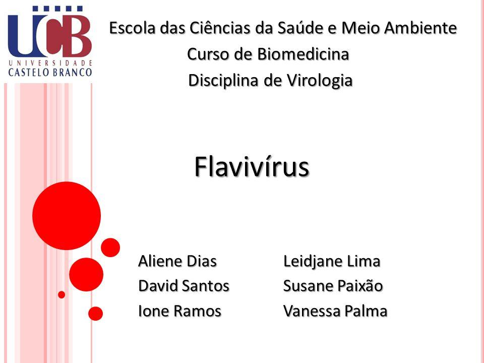 Flavivírus Escola das Ciências da Saúde e Meio Ambiente
