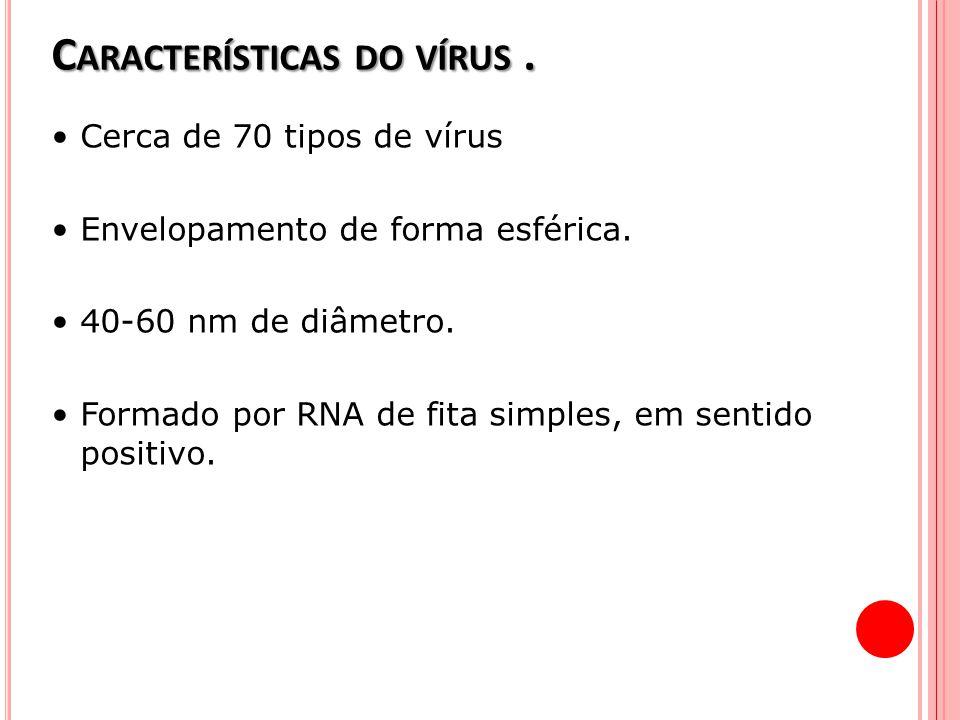 Características do vírus .