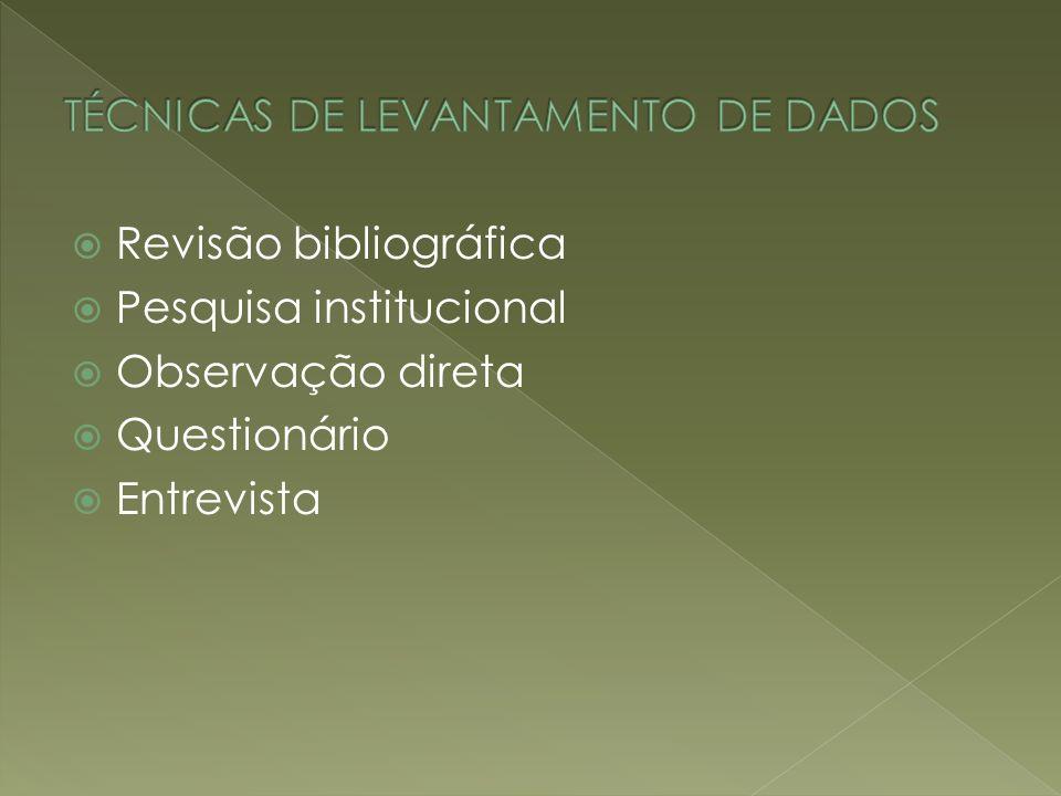 TÉCNICAS DE LEVANTAMENTO DE DADOS