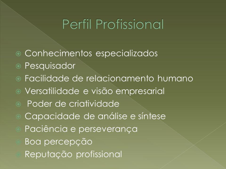Perfil Profissional Conhecimentos especializados Pesquisador
