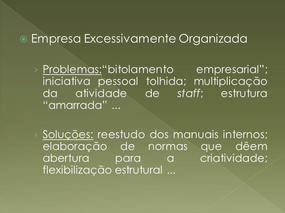 Empresa Excessivamente Organizada