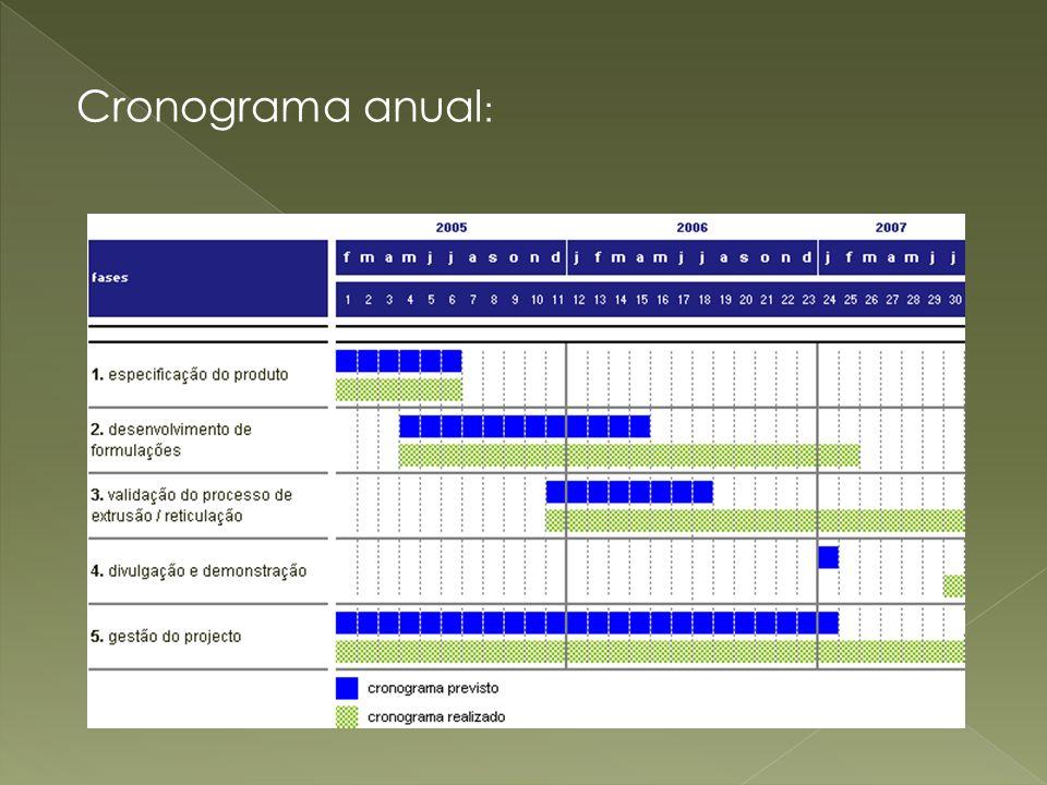 Cronograma anual: