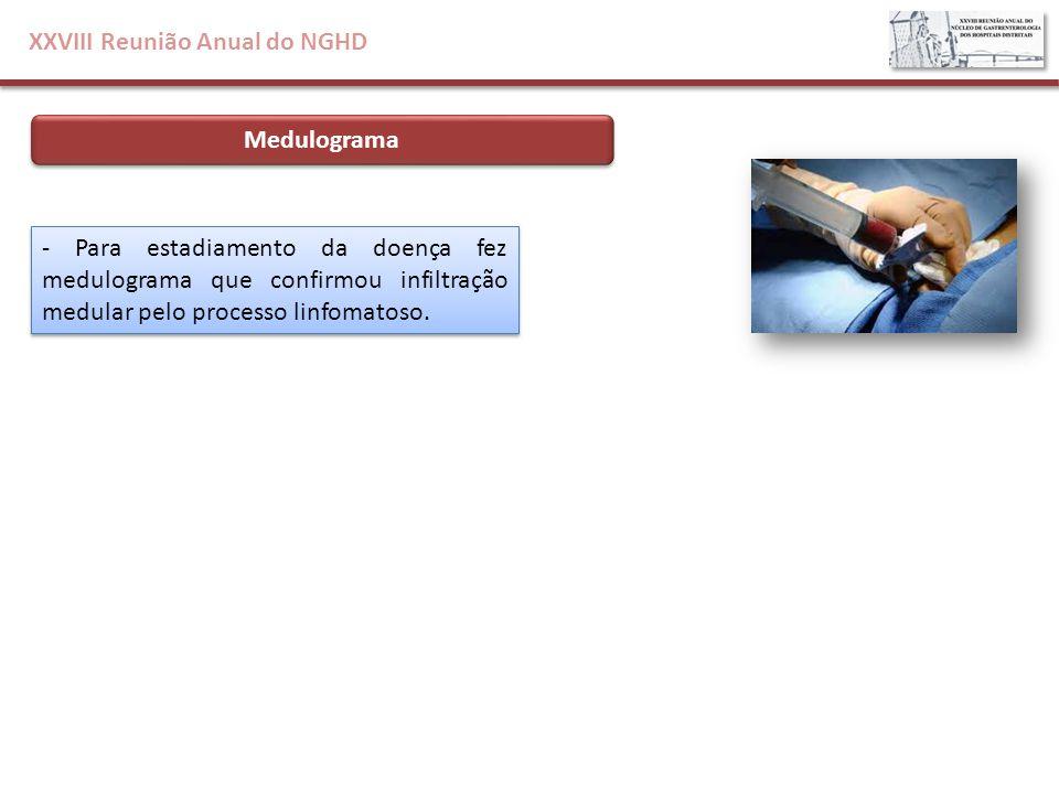XXVIII Reunião Anual do NGHD