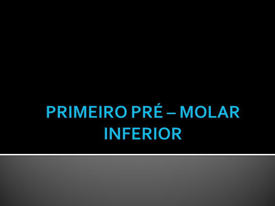 PRIMEIRO PRÉ – MOLAR INFERIOR