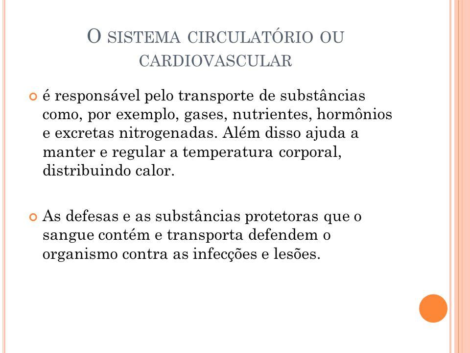 O sistema circulatório ou cardiovascular
