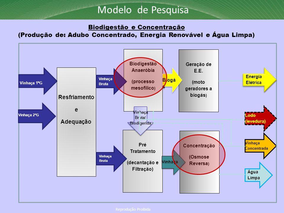 Biodigestão e Concentração