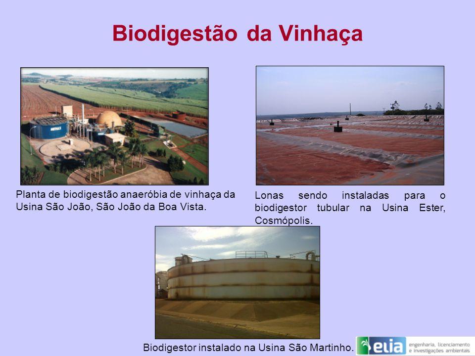 Biodigestão da Vinhaça