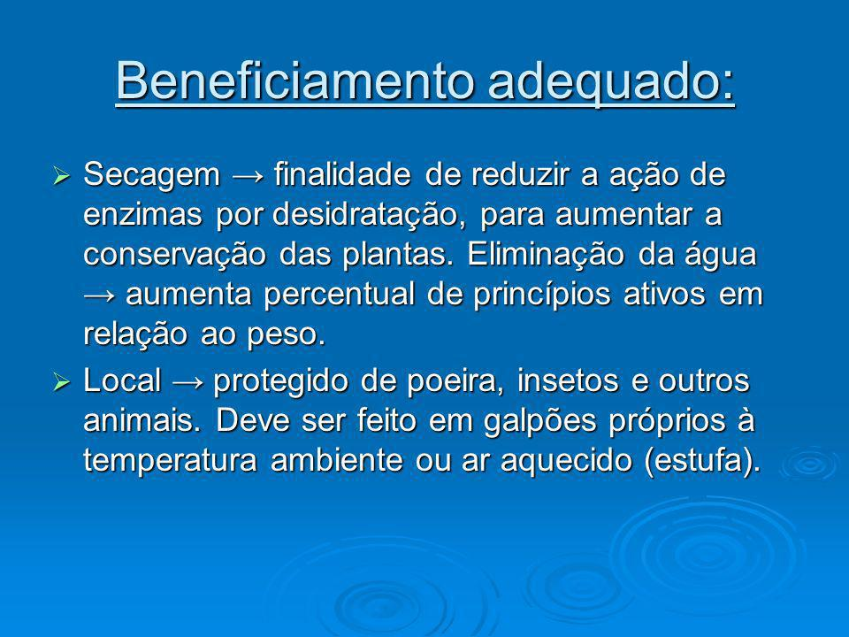 Beneficiamento adequado: