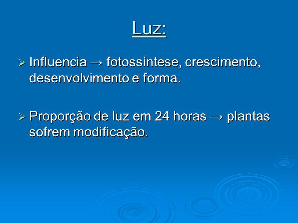 Luz: Influencia → fotossíntese, crescimento, desenvolvimento e forma.