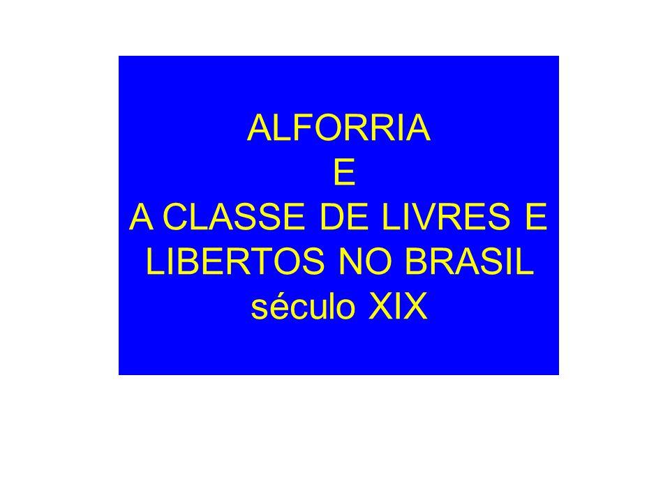 A CLASSE DE LIVRES E LIBERTOS NO BRASIL século XIX