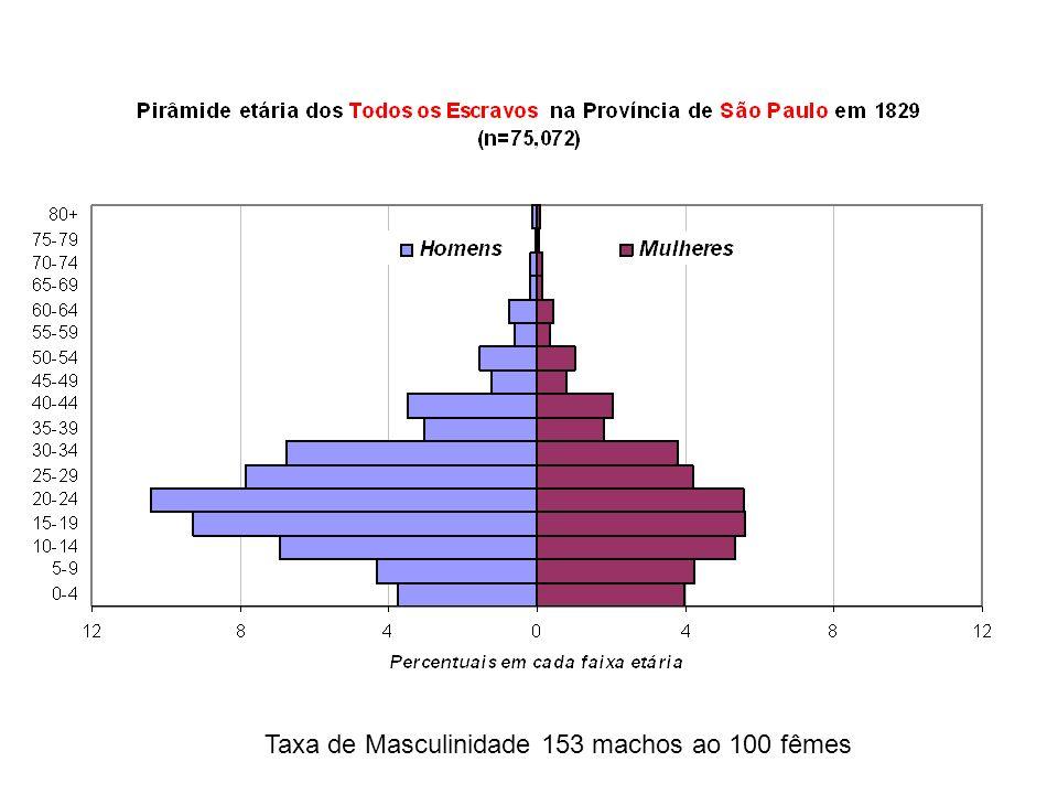 Taxa de Masculinidade 153 machos ao 100 fêmes
